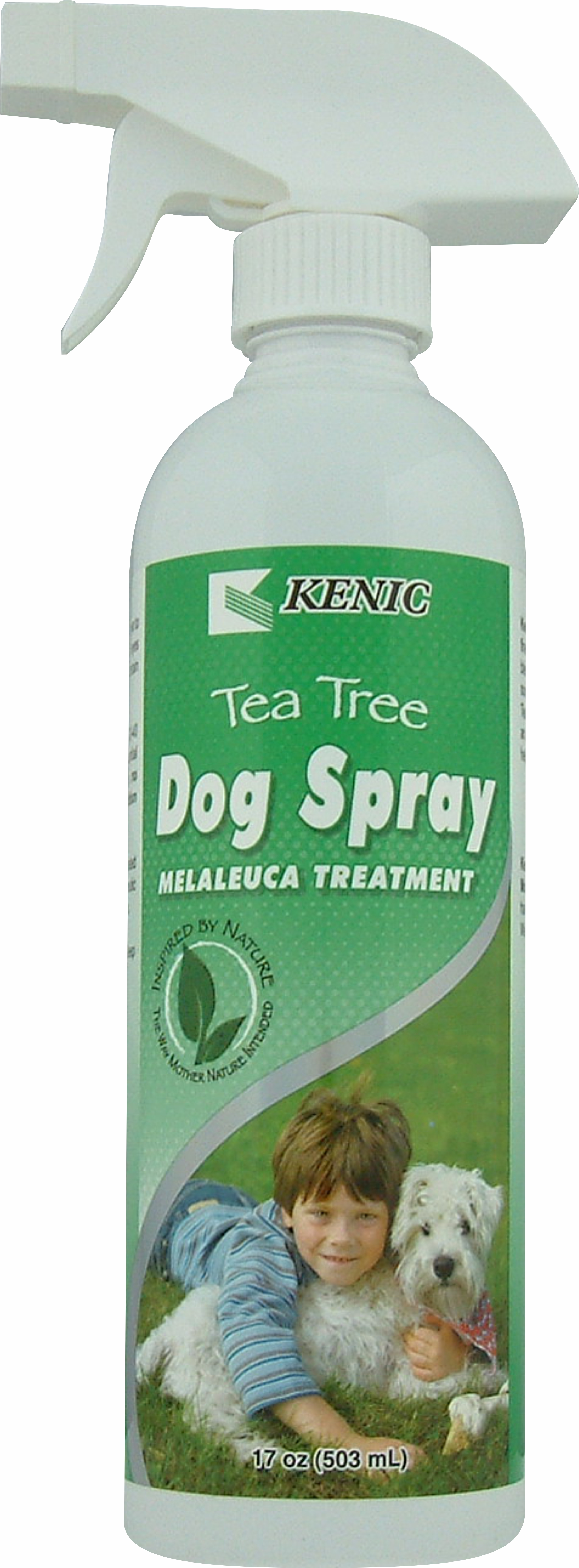 What Can You Use On Dogs For A Antiseptic